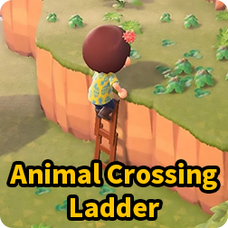 How to get Ladder in Animal Crossing Nintendo Switch