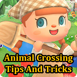 Animal Crossing: Things That Newbie Players Can\'t Do! Things To Pay Attention To in the Early Stage